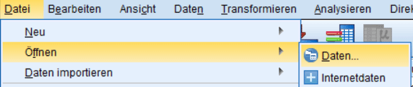 In SPSS Daten importieren: SPSS-Format