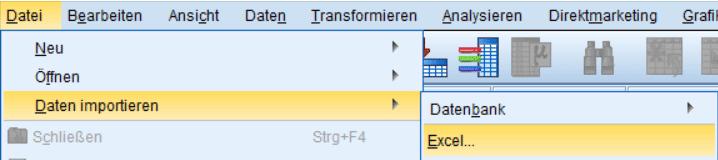 SPSS Daten importieren: Menü für das Excel-Format (.xlsx oder .xls)