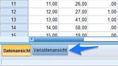 SPSS Variablenansicht