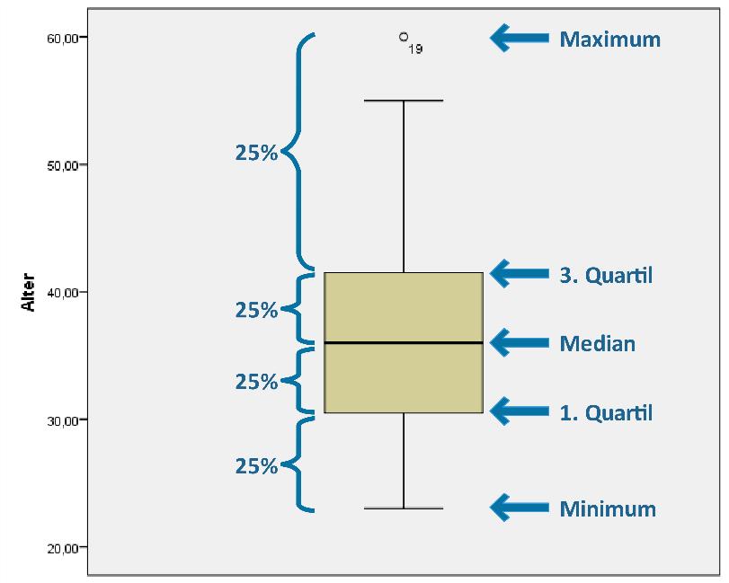 Quartile SPSS Boxplot erstellen