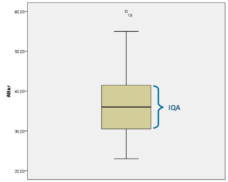 IQA SPSS Boxplot erstellen