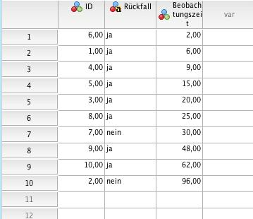 Datenfenster in SPSS für Kaplan Meier Berechnung bei Survival Analysis