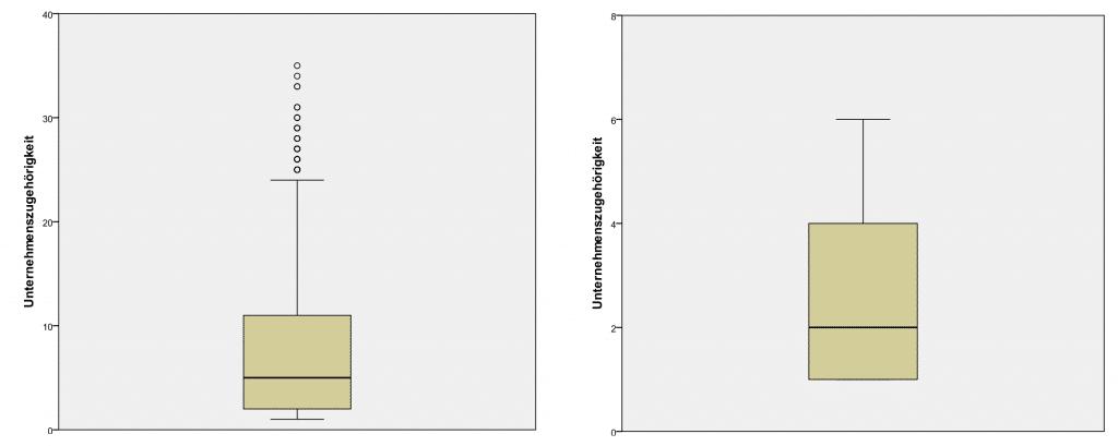 Datenbereinigung SPSS: Vorher und Nachher