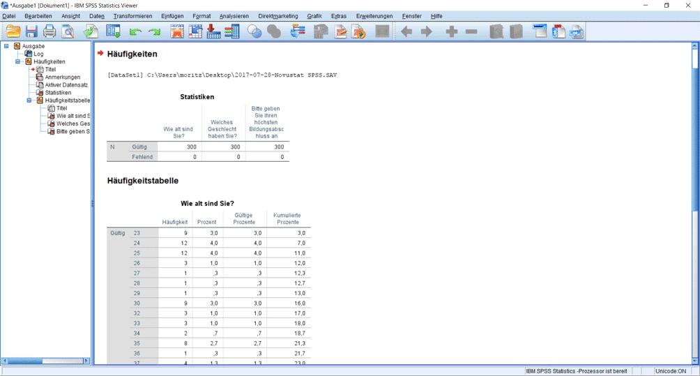 Deskriptive Statistiken im SPSS Output