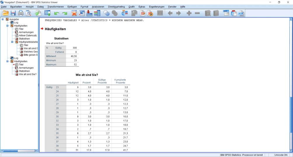 Output: Deskriptive Statistik des Alters mit Minimum, Maximum und Mittelwert